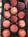 продаем персик из »спании