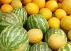 Продам высококачественные семена арбуза и дыни