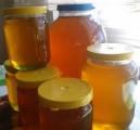 Продам мед 500л і більше!