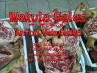 Продам головы свиные с баками и  ушами / голови свині з баками