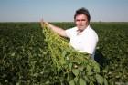 Семена  сои Троица новый сорт первый год розмножения 50ц/га,