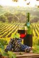 ƒомашнее разливное вино - аберне (5 лет выдержки)