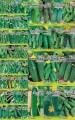 """Предлагаем семена Огурцов сортовые и гибридные от тм """"Eco-semena"""" ..."""
