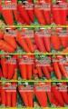 Пропонуємо насіння Моркви - пакет Гігант  оптом