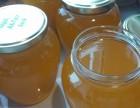 Мед подсолнух