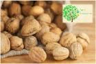ѕродам ореховый бизнес, с льготами на экспорт грецкого ореха