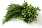 Продам укроп/петрушку.    Selling dill/parsley