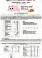 Продам БВМД (концентрат) свиноматки супоросні -10% (Україна)