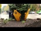 устройство дл¤ пересадки деревьев