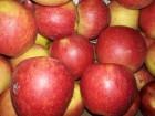 ѕродам яблоко