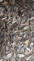 Продам отходы семечки Ягуар