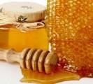Покупаем мед оптом. Реальная цена. Круглый год