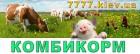 Комбикорм экспорт и Украина