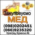 Закуповуємо мед з соняшника, Центральні областя