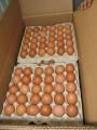 Продам яйца куриные столовые: С-0; С-1; С-2; вся продукция свежая