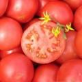Семена томата Тропикал Джем