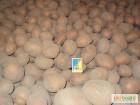 Продам картоплю  з песка