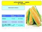 Цинк хелаты удобрение для листовой подкормки кукурузы, сои, бобовых