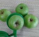 яблоки из ѕольши
