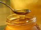 Продам мед 1400т