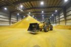 Надаємо послуги з відвантаження зерна у залізничні вагони