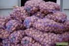 Продам картошку сорт бела роса славянка ривьера