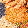 Белково-витаминные кормовые добавки