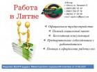 Официальное трудоустройство в Литве - Превью изображения 1