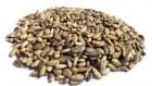 продам насіння чечивиці  розторопши