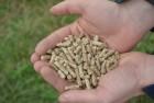 Продадим древесные пелеты 6 мм от производителя