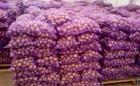 Продам домашний картофель оптом