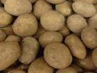 Куплю товарный картофель 20-30 тонн