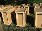 Пчелопакеты карпатской породы Мукачево 2018 Закарпатская обл