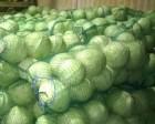 ѕродам овощи борщевого набора