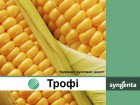 Гербіцид - ТРОФІ Syngenta