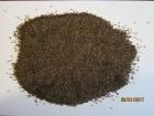 Продам насіння фацелії