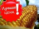 Продам семена кукурузы Оржица