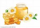 Покупаем мёд оптом.