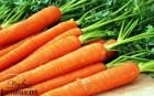 морковка с поля