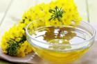 Давальческая переработка семян масличных культур (рапс, подсолнечник)
