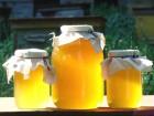 Продам мед натуральний з власної пасіки