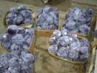 Продаем капусту краснокачанную (синюю) оптом