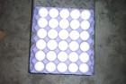 Продам крупным оптом на Экспорт яйца С0, С1, С2  FCA CIF DDU