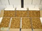 Продам грецький горіх постійно у великих кількостях