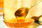 ѕродам оптом лесной мед