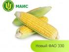 Семена кукурузы (МАИС) Новый ФАО 330