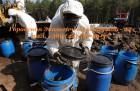Утилизация пестицидов, гербицидов и других опасных отходов