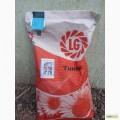 Лимагрейн, семена подсолнечника Тунка, ЛГ5580 (сертифицировано)