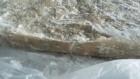 Рыбная мякоть пищевая мороженная из бычка азово-черноморского