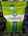 Семена подсолнечника (Евралис) ЕС Белла Импорт распродажа 2016 года